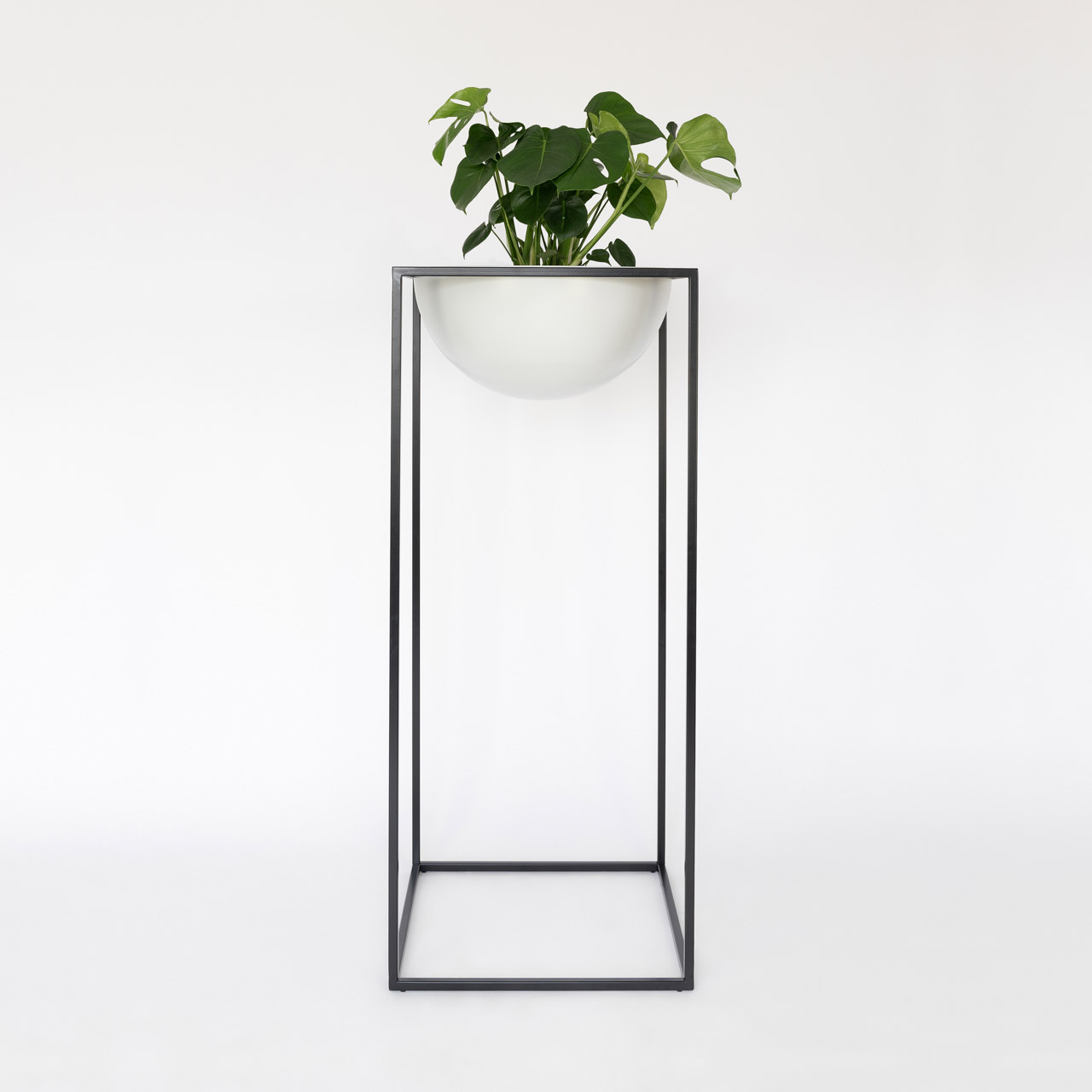 NOBL design vaas op planten standaard voor binnen met Monstera op witte achtergrond