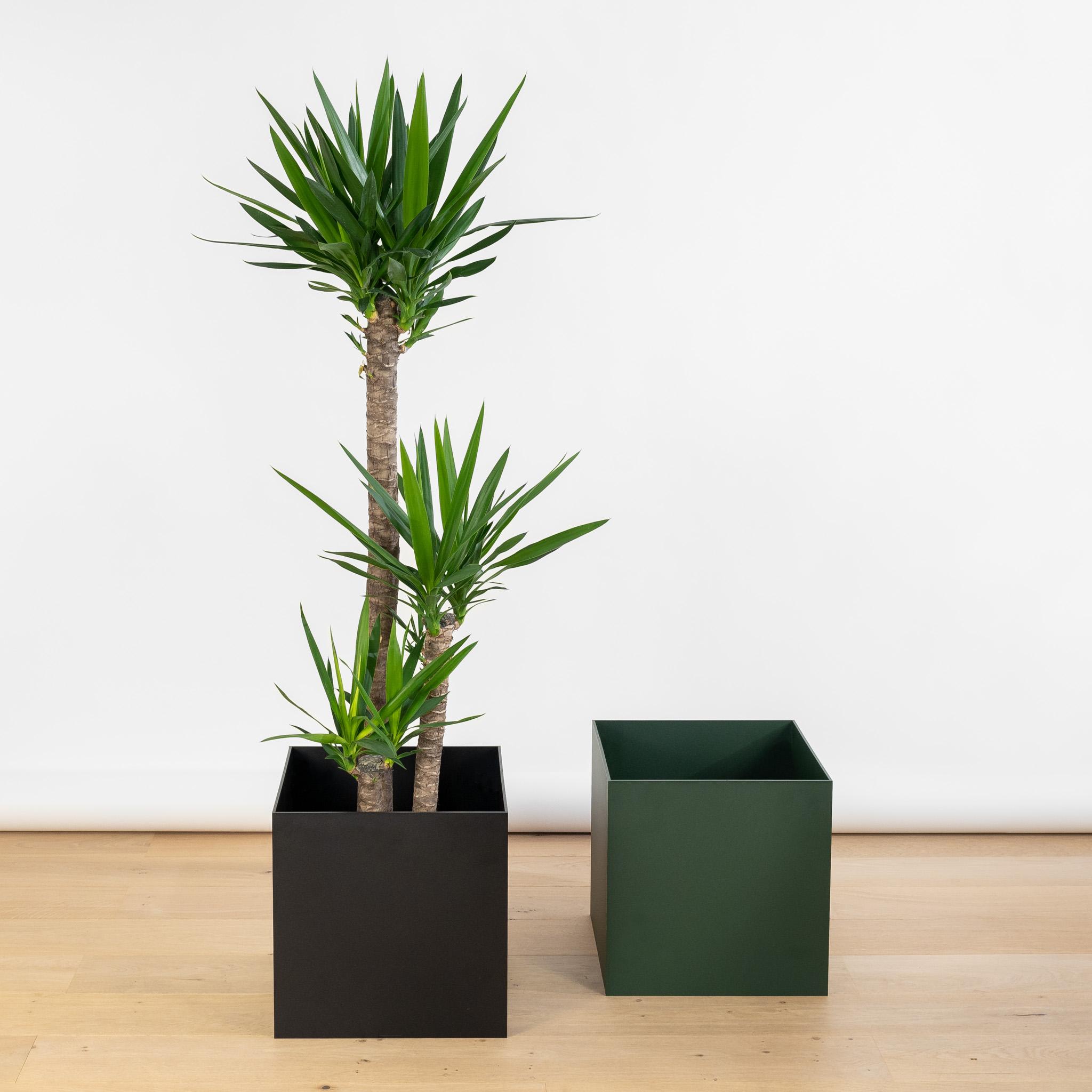 Steelish plantenbakken van 5mm dik hoogwaardig staal
