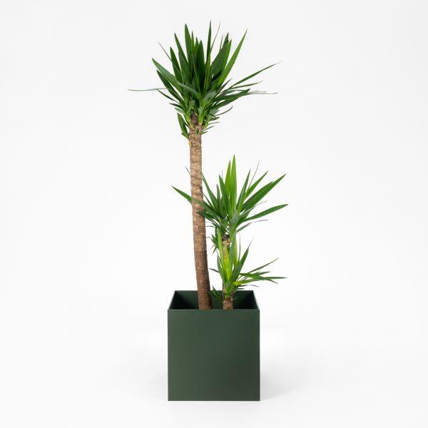 Steelish plantenbak van 5mm dik staal